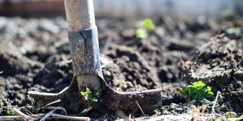 5 voor- en nadelen van tuinonderhoud uitbesteden - Jouwtuininspiratie.nl